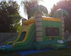 palm tree combo Bounce House side