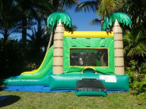 palm tree combo Bounce House